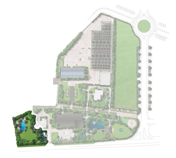 plan-giardino-stellato-dopo